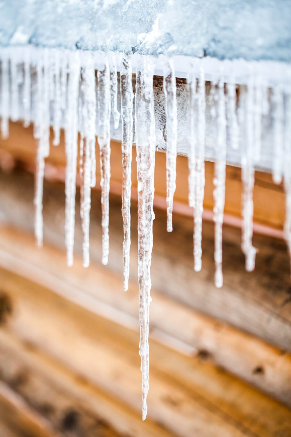 Long Icicles Melting of a Log Wood Chalet roof top